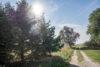 Landhofidylle pur mit Wasserblick aufs Haff – Traumdomizil im Naturpark Insel Usedom - Landhof-119
